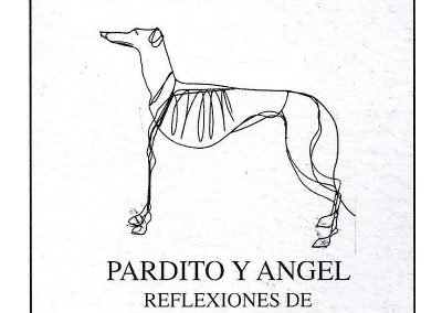 Pardito_Angel05
